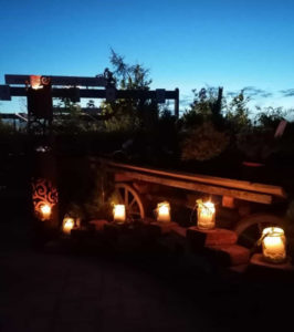 Baumschulträume im Lichtermeer